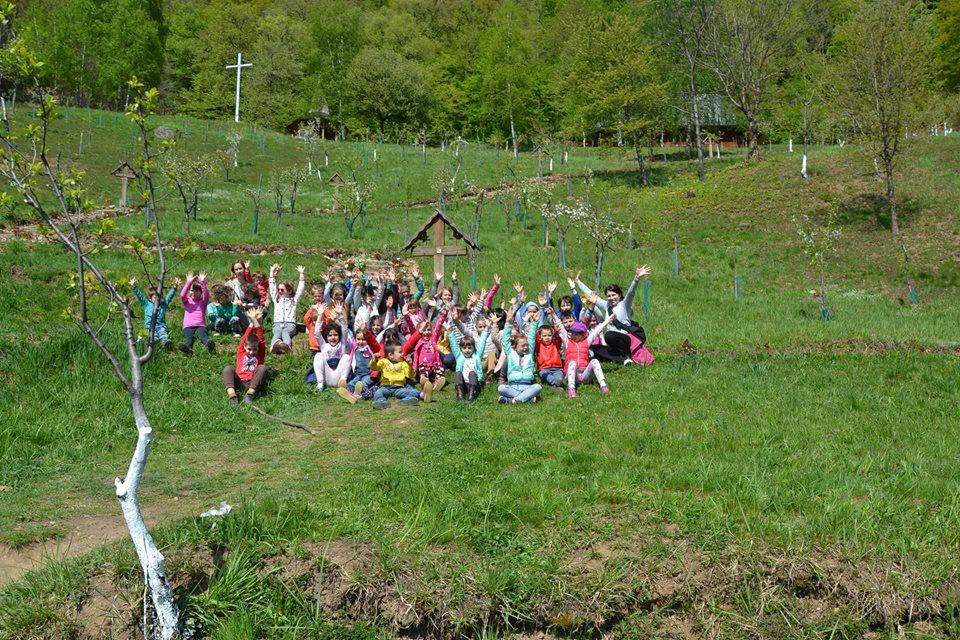 scoala alexandru rusu 1